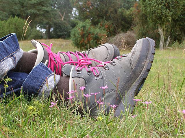 wandelaar-in-gras