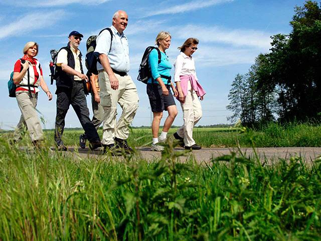 wandelende -groep